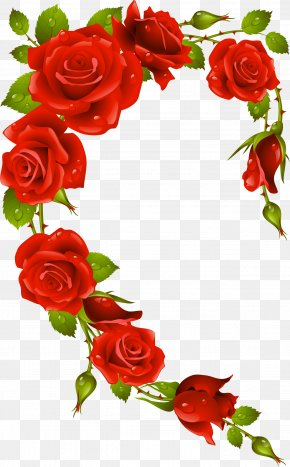 Rose Frame - Rose Picture Frames Stock Photography Clip Art PNG