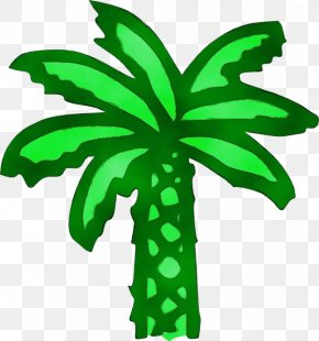Arecales Palm Tree - Palm Tree Leaf PNG