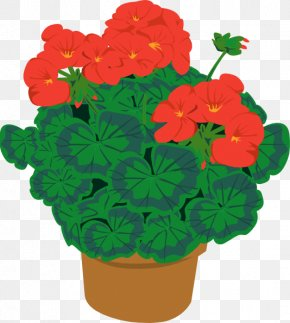 Geraniums Cliparts - Houseplant Flower Clip Art PNG