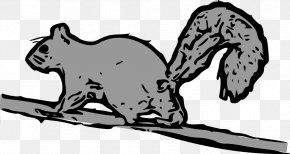Picture Squirrel - Tree Squirrel Eastern Gray Squirrel Clip Art PNG