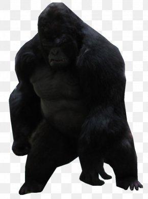 Gorilla - Gorilla Grodd Flash Western Gorilla Common Chimpanzee Killer Frost PNG