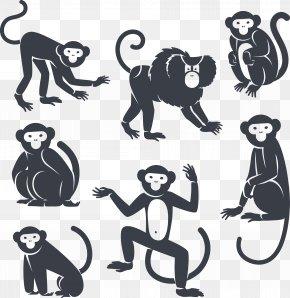 Monkey - Monkey Royalty-free Marmoset PNG