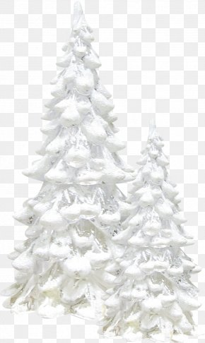 White Snow Tree - Snow Tree Winter Pine PNG