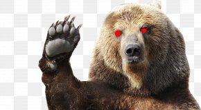 Bear - Polar Bear Growling Grizzly Bear Kodiak Bear PNG