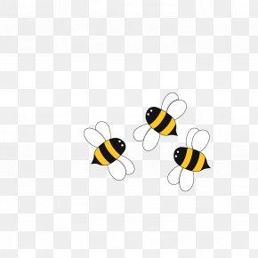 Bee - Bee Apis Florea Euclidean Vector PNG