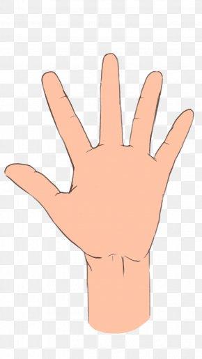 Palmistry Hand Image Ring Finger Middle Finger PNG