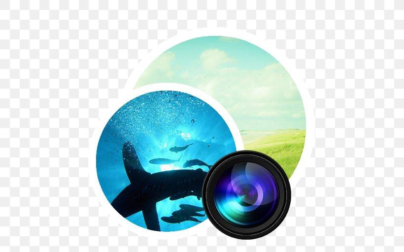 Aqua Circle, PNG, 512x512px, Shark, Aqua, Bull Shark, Great Hammerhead, Great White Shark Download Free