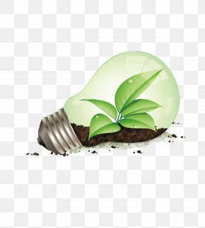 Vector Bulb - Incandescent Light Bulb Energy Conservation Efficient Energy Use Energy Saving Lamp PNG