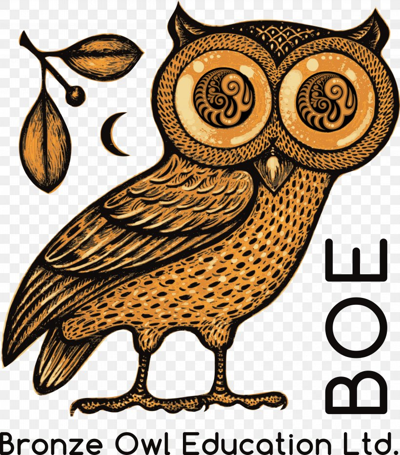 Owl Of Athena Classical Athens Greek Mythology Png