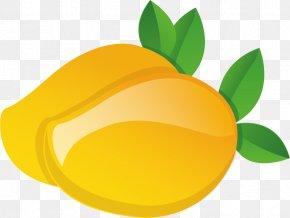 Mango Clip Art - Vector Graphics Clip Art Mango Image PNG