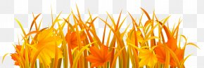 Autumn Grass Clipart Image - Autumn Clip Art PNG