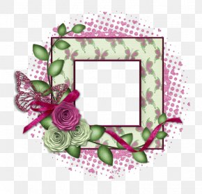 Design - Paper Picture Frames Floral Design Art PNG