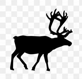 Reindeer - Reindeer Santa Claus Clip Art PNG