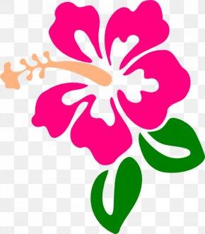 Hawaiian Pictures - Hibiscus Schizopetalus Drawing Hawaiian Hibiscus Clip Art PNG