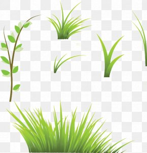 Grass - Lawn Stock Photography Royalty-free Clip Art PNG