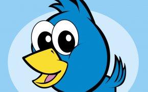 Bird Cartoon Image - Bird Clip Art PNG