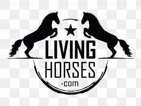 Kentaur Steigbügelriemen mit Horse Shop Logo