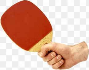 Ping Pong Racket In Hand Image - Table Tennis Racket PNG