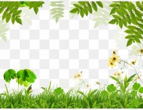 Green Grass Leaves Border - Spring Green Leaf Film Frame PNG