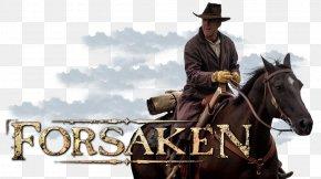 Horse - Horse Rein Western Riding Cowboy Halter PNG