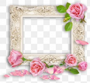 Rose - Borders And Frames Picture Frames Image Clip Art Rose PNG