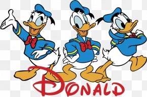 Donald Duck - Donald Duck Mickey Mouse Scrooge McDuck Vector Graphics Adobe Illustrator Artwork PNG