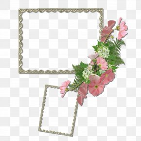 Mood Frame - Picture Frame PNG