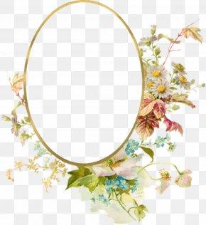 Floral Frame - Picture Frames Mat Antique Molding PNG