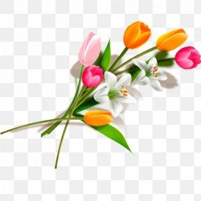 Bouquet Of Tulips - Tulip Flower Bouquet PNG
