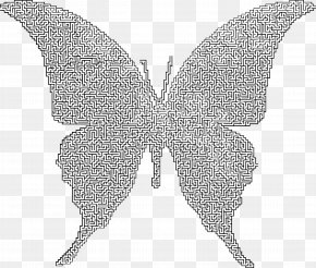 Maze - Butterfly Insect Maze Moth Puzzle PNG