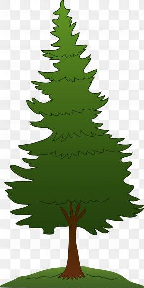 Tree Clip Art - Pine Tree Clip Art PNG