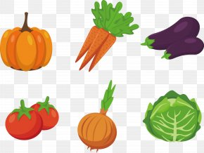 Vegetable Vector Material - Vegetable Drawing Clip Art PNG