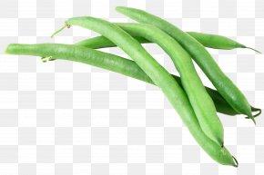 Green Beans - Green Bean Vegetable Garlic PNG