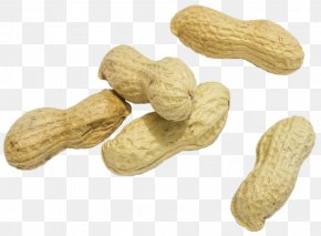 Groundnut - Superfood Ingredient Peanut Commodity PNG