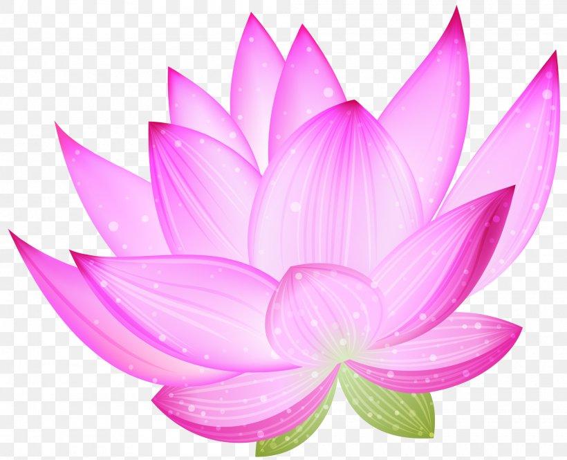 Nelumbo Nucifera Lotus Clip Art, PNG, 2000x1623px, Nelumbo Nucifera, Aquatic Plant, Black And White, Blog, Dahlia Download Free