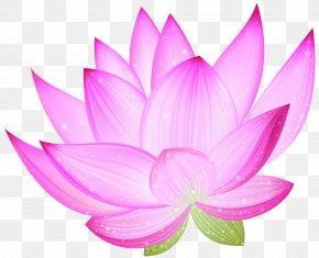 Large Pink Lotus Clipart - Nelumbo Nucifera Lotus Clip Art PNG