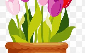 Houseplant Wildflower - Flower Pot Drawing PNG