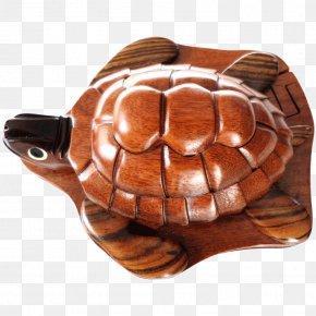 Wood - Wood Puzzle Box Tortoise Turtle PNG