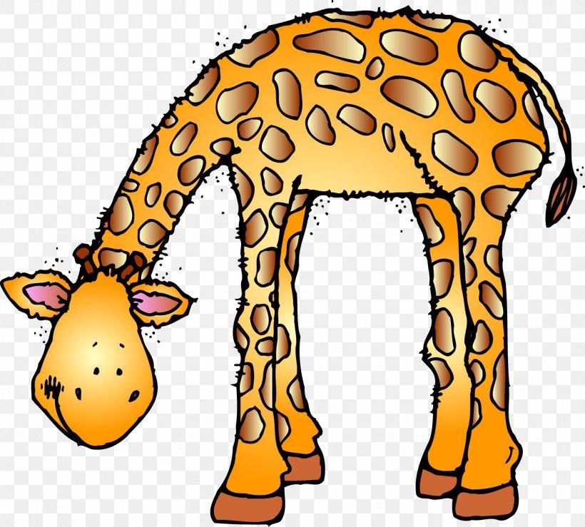 Marwell Wildlife Baby Jungle Animals Giraffe Zoo Clip Art Png 1383x1247px Marwell Wildlife Animal Baby Jungle