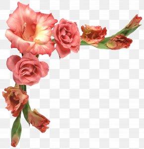 Flower Border - Flower PNG