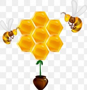 Bee - Western Honey Bee Beehive Honeycomb PNG