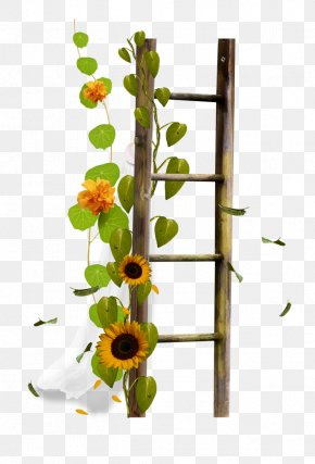 Drawing Flower Flower Border Image - Ladder Stairs Sticker Clip Art PNG