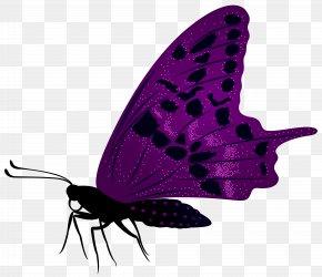 Large Purple Butterfly Clip Art Image - Butterfly Purple Clip Art PNG