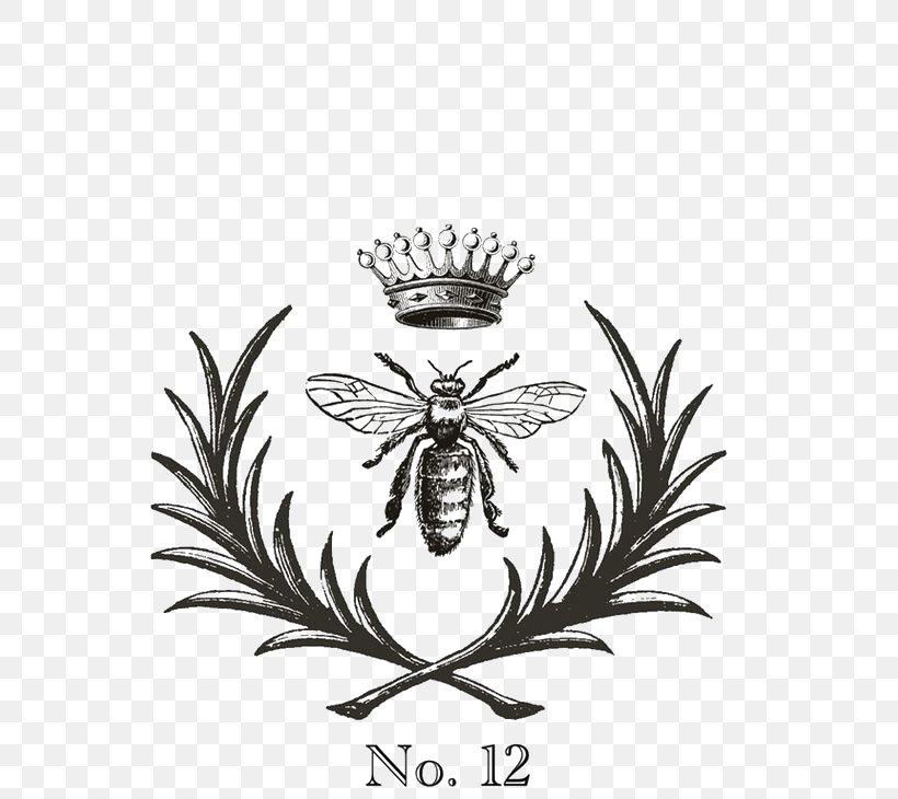European Dark Bee Queen Bee Clip Art Png 564x730px European Dark Bee Art Arthropod Bee Beehive