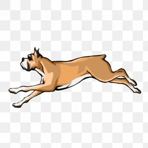 Dog Draw - Dog Breed Boxer Cat Leash Snout PNG