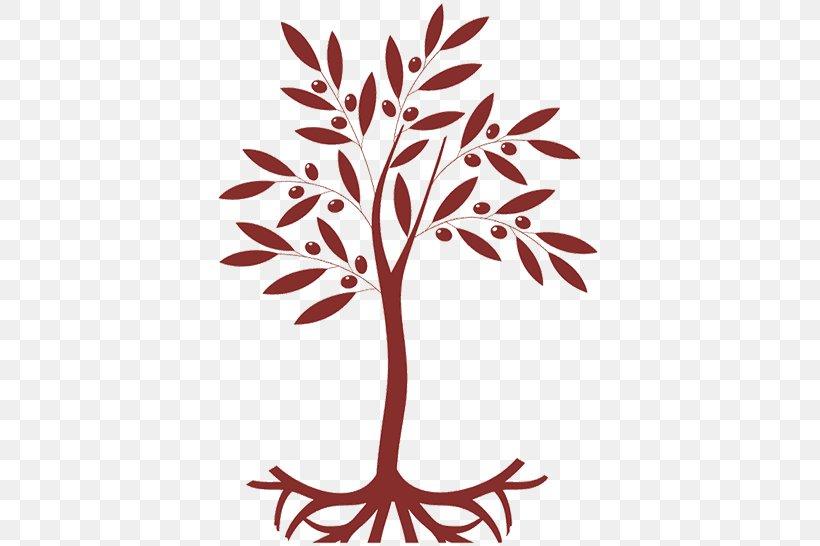 Twig Olive Leaf Tree Plant Stem, PNG, 530x546px, Twig, Branch, Finance, Flora, Flower Download Free