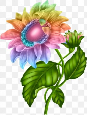 Artificial Flower Aster - Bouquet Of Flowers Drawing PNG