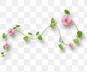 Floral Decoration - Download Pink Icon PNG