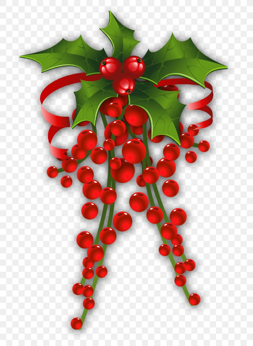 Mistletoe Christmas Common Holly Clip Art, PNG, 752x1120px, Mistletoe, Aquifoliaceae, Aquifoliales, Berry, Branch Download Free