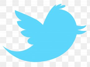 Download Twitter Logo - Vector Graphics Clip Art Logo Image PNG